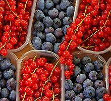 VeryBerries by jerry  alcantara