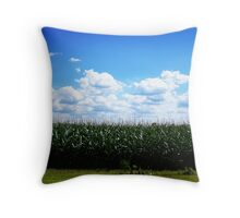 """""""Wide open spaces..."""" Throw Pillow"""