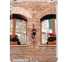 Reflections In Glass iPad Case/Skin