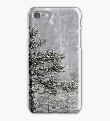 23.1.2015: Pine Trees in Blizzard I iPhone Case/Skin