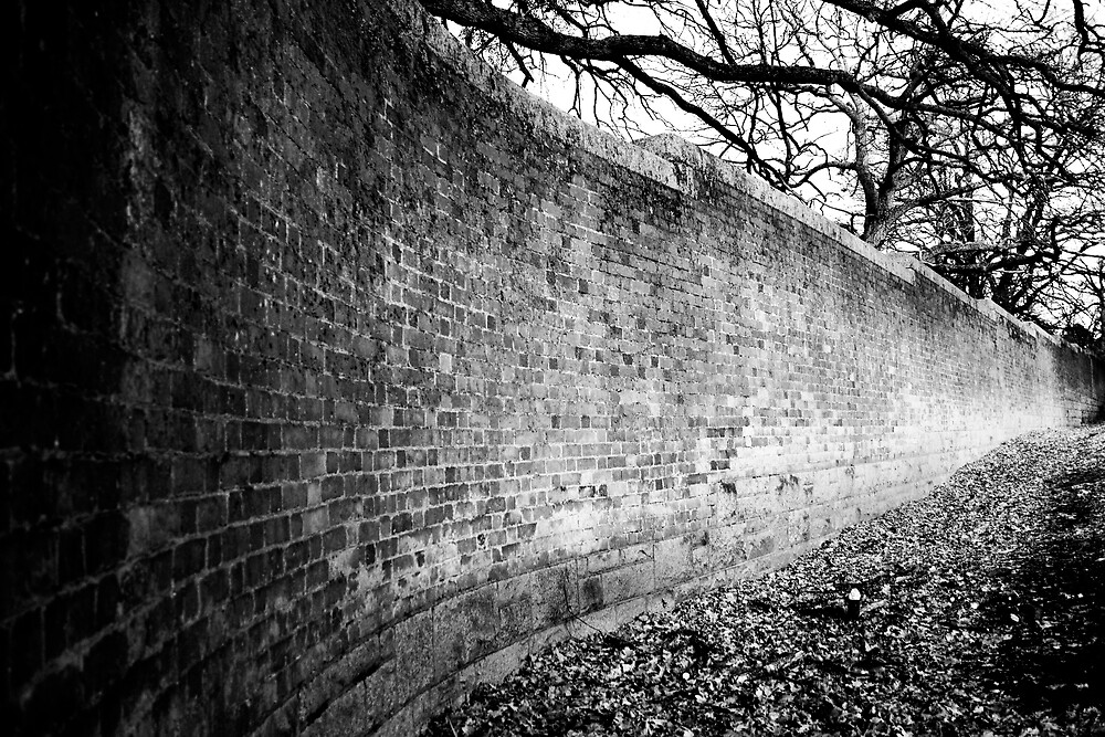 Ha-Ha wall by Belinda Fraser
