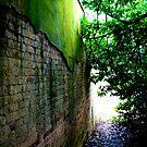 Ha-Ha wall #2 by Belinda Fraser