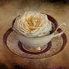 Rose in a tea cup by eddiej