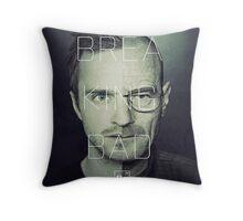 Heisenberg & Pinkman Throw Pillow