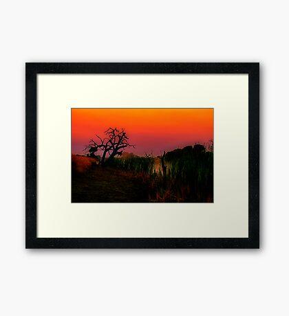 """Creekside at Dawn"" Framed Print"
