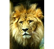 A Worried King Photographic Print