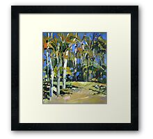 Pale Gums Framed Print