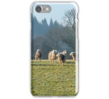 Woolly Jumpers iPhone Case/Skin