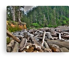 log jam Canvas Print