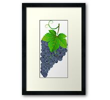 Tasty dark grape Framed Print