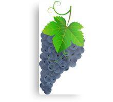 Tasty dark grape Metal Print