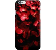 Red Flowers Bouquet in Black Background Photography iPhone Case/Skin