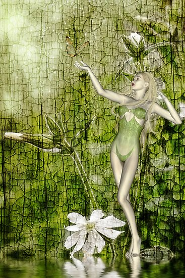 White Elf - a collaboration with Rose Moxon by John Edwards