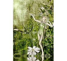 White Elf - a collaboration with Rose Moxon Photographic Print