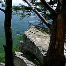 View From Pilot Mountain by Lolabud