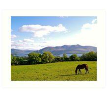 County Kerry Art Print