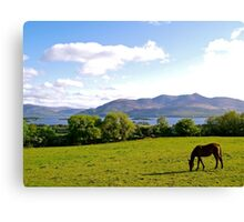 County Kerry Canvas Print