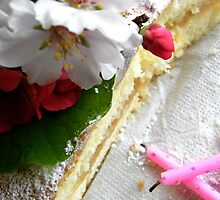 Birthday Cake... remains of... by binjy