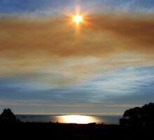 Shining through... by Mary Trebilco