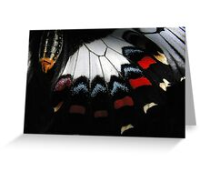 Orchard Butterfly Greeting Card