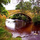 The Bridge by Trevor Kersley