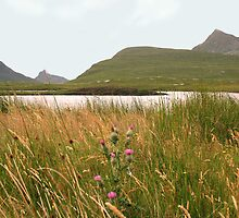 Stac Pollaidh and Cul Mor by jacqi