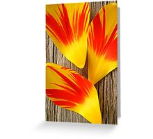 Tulip Deconstructed Greeting Card