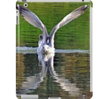 Above and Below.......... iPad Case/Skin