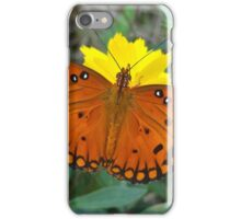 Butterfly Perched on Flower iPhone Case/Skin