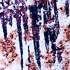 Rusty shutter by wabisabi54