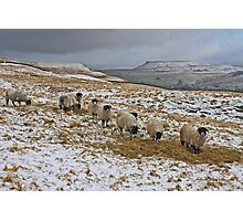 A Rural Winter Scene Photographic Print