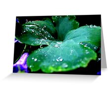 Rainy and Wet Greeting Card