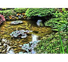 Butchart Garden Canada Photographic Print