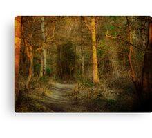 The Path On Grym's Dyke Canvas Print