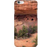 Horsecollar Ruin  iPhone Case/Skin