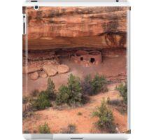Horsecollar Ruin  iPad Case/Skin