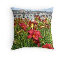Boston Garden Throw Pillow