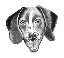 Boomer the barfing barking ball-obsessed beagle by karenlizzie