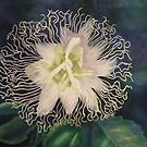 Watercolour: Passionflower by Marion Chapman