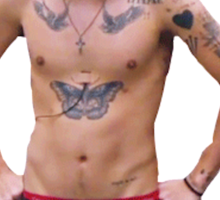 Shirtless Harry  Sticker
