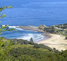 Illawarra Coast by Terry Everson