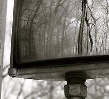 Rear view mirror by CaitieP