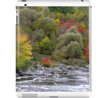Autumnal Beauty. iPad Case/Skin