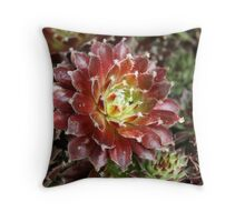 """""""Singled Out"""" Throw Pillow"""