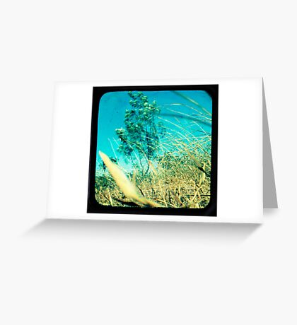 When the Wind Blows Greeting Card
