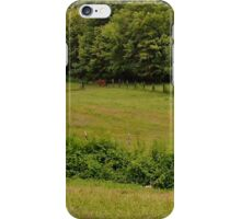 Greener pastures on the other side of the mountain iPhone Case/Skin