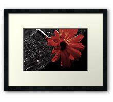 red on black Framed Print