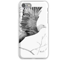 Spreading the ealge's wings iPhone Case/Skin