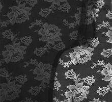 Lace overlay by Hayley Joyce
