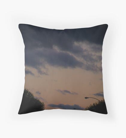 stop and observe. Throw Pillow